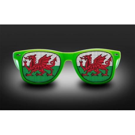 Lunettes de supporter - Pays de Galles - Drapeau